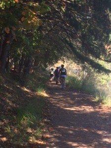 Soaking Up Fall Creek Falls State Park