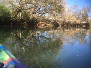 Kayak the Calfkiller River, Sparta, TN