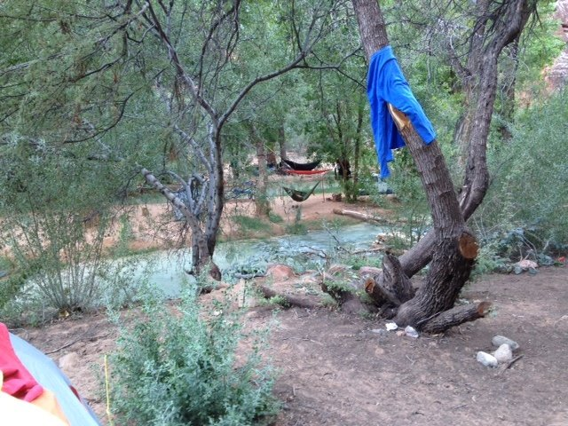 Our campsite on Havasu Creek