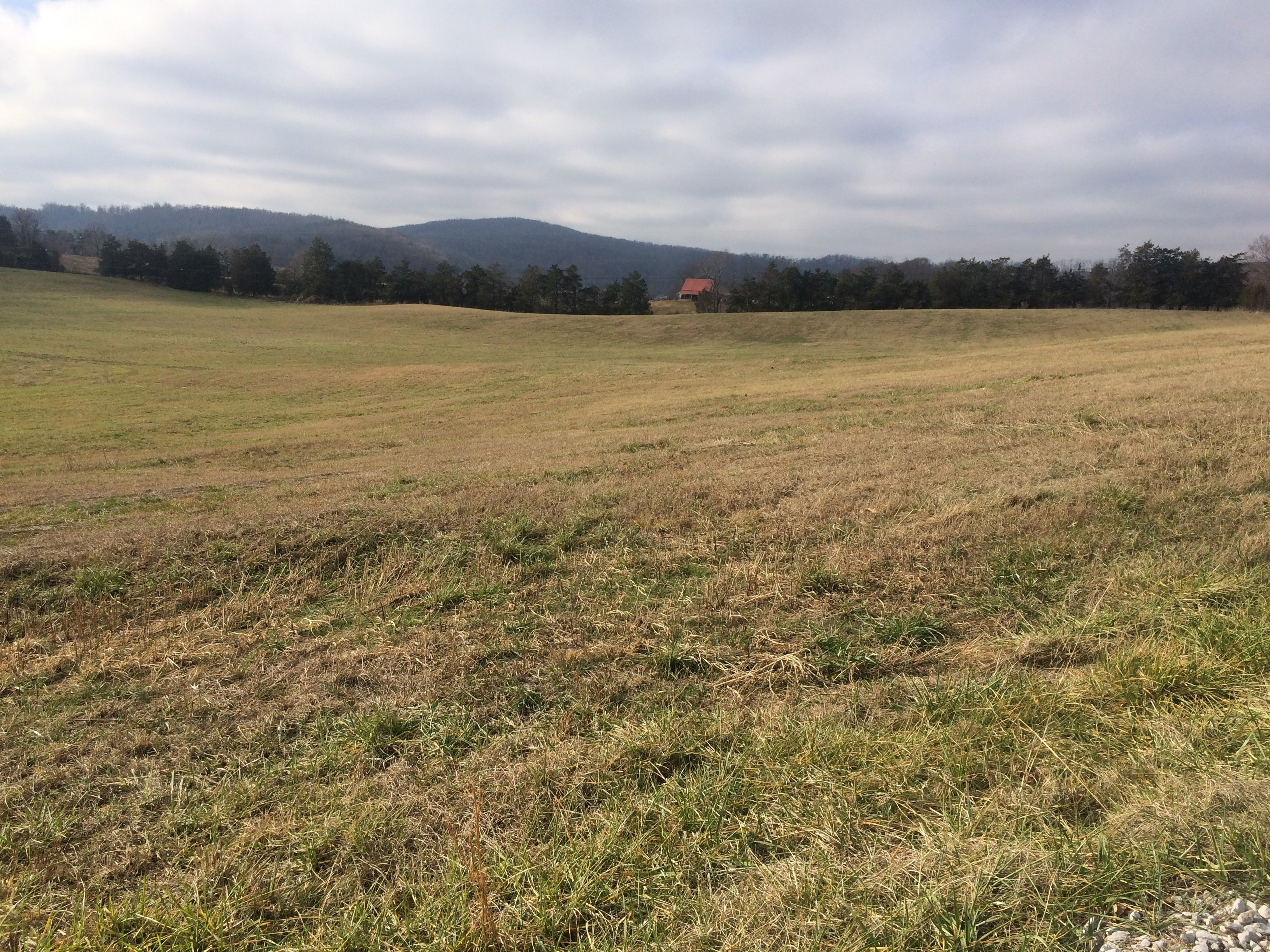 Land for Sale in Sparta, TN